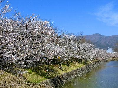 f:id:kabutoyama-tigers:20190717084755j:plain