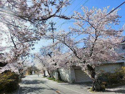f:id:kabutoyama-tigers:20190717115940j:plain