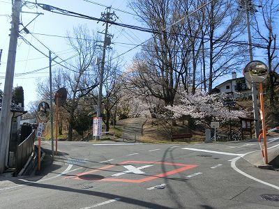 f:id:kabutoyama-tigers:20190717122200j:plain