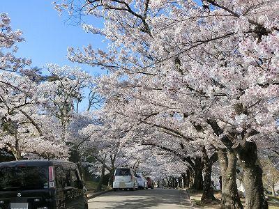 f:id:kabutoyama-tigers:20190717125826j:plain