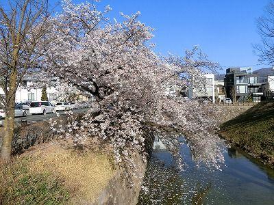 f:id:kabutoyama-tigers:20190717133727j:plain