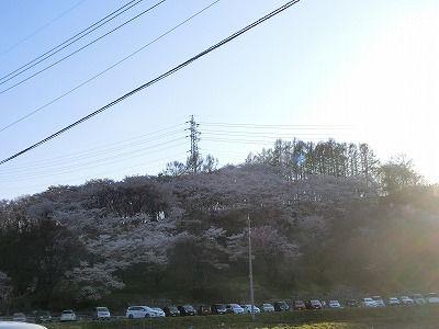 f:id:kabutoyama-tigers:20190717134944j:plain