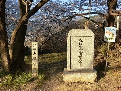 f:id:kabutoyama-tigers:20190717135024j:plain