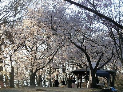 f:id:kabutoyama-tigers:20190717135049j:plain