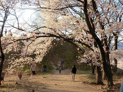 f:id:kabutoyama-tigers:20190717135134j:plain