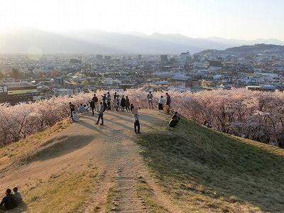 f:id:kabutoyama-tigers:20190717135428j:plain