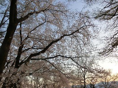 f:id:kabutoyama-tigers:20190717140654j:plain