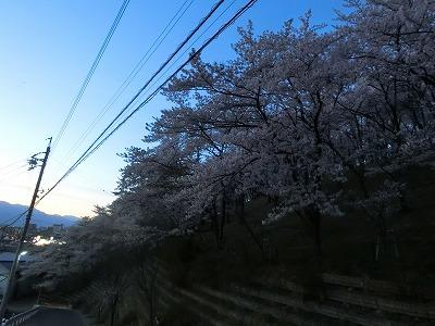 f:id:kabutoyama-tigers:20190717141352j:plain