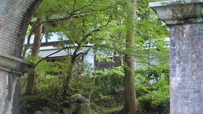 f:id:kabutoyama-tigers:20191014163343j:plain