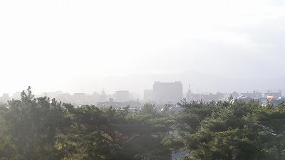 f:id:kabutoyama-tigers:20191014163539j:plain
