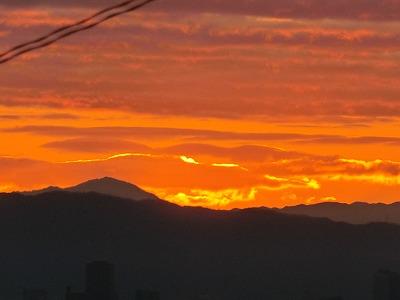 f:id:kabutoyama-tigers:20200206135641j:plain