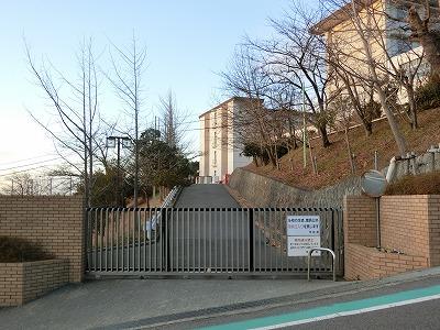f:id:kabutoyama-tigers:20200510153836j:plain