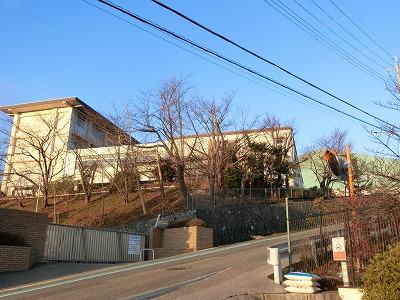 f:id:kabutoyama-tigers:20200510153912j:plain