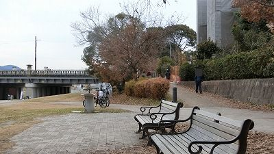 f:id:kabutoyama-tigers:20200515162159j:plain