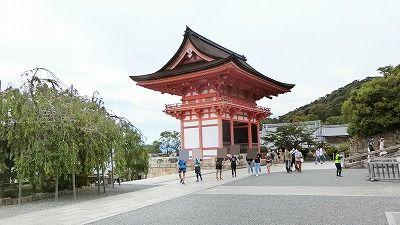 f:id:kabutoyama-tigers:20200624000510j:plain