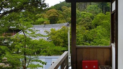 f:id:kabutoyama-tigers:20200624003659j:plain