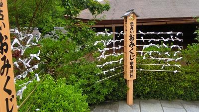 f:id:kabutoyama-tigers:20200624004555j:plain