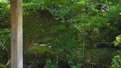 f:id:kabutoyama-tigers:20200624031730j:plain