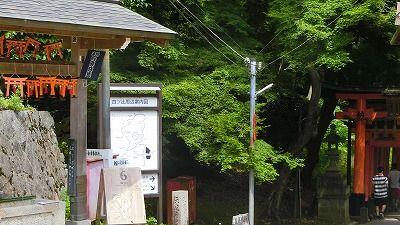 f:id:kabutoyama-tigers:20200624105229j:plain