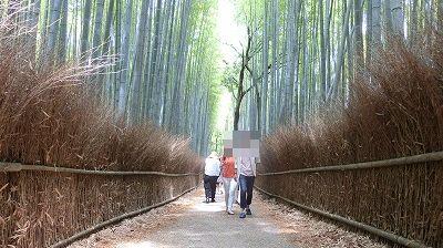 f:id:kabutoyama-tigers:20200624141623j:plain