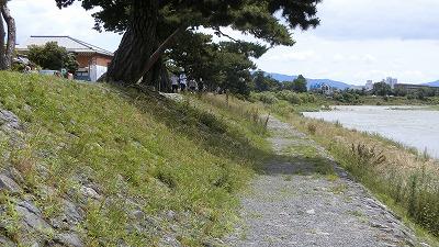 f:id:kabutoyama-tigers:20200624144729j:plain