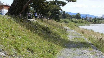 f:id:kabutoyama-tigers:20200624144857j:plain