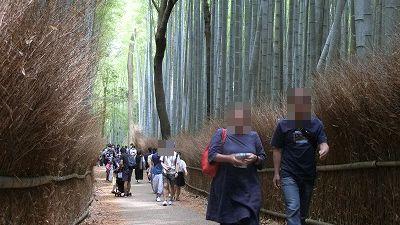 f:id:kabutoyama-tigers:20200624153126j:plain