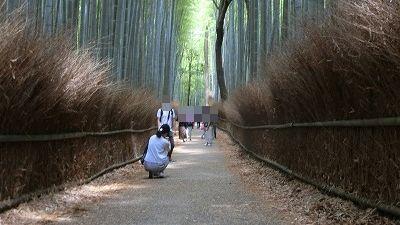 f:id:kabutoyama-tigers:20200624155731j:plain