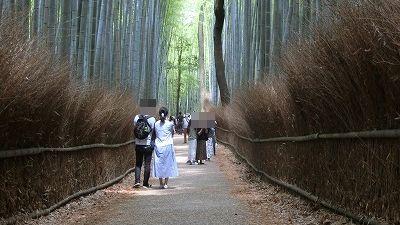 f:id:kabutoyama-tigers:20200624162256j:plain