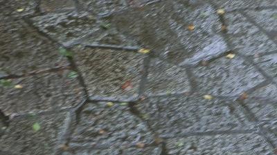 f:id:kabutoyama-tigers:20200704052454j:plain