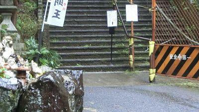 f:id:kabutoyama-tigers:20200704060203j:plain