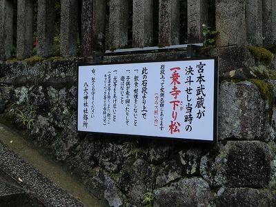 f:id:kabutoyama-tigers:20200704065953j:plain