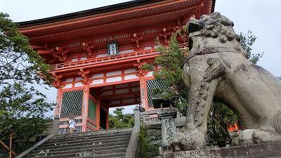 f:id:kabutoyama-tigers:20200722065124j:plain