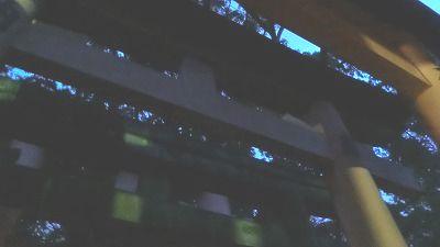 f:id:kabutoyama-tigers:20200722073847j:plain