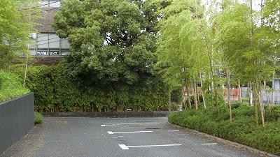 f:id:kabutoyama-tigers:20200722104515j:plain