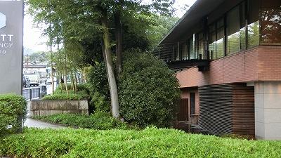 f:id:kabutoyama-tigers:20200722105540j:plain