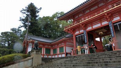 f:id:kabutoyama-tigers:20200722113713j:plain