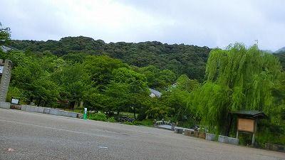 f:id:kabutoyama-tigers:20200724123303j:plain