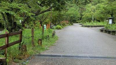 f:id:kabutoyama-tigers:20200724130512j:plain