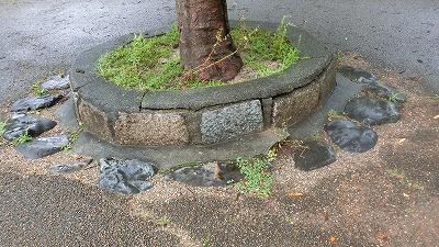 f:id:kabutoyama-tigers:20200724130909j:plain