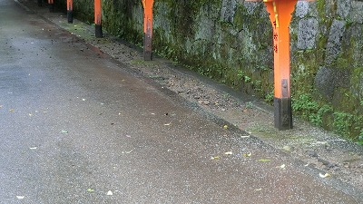 f:id:kabutoyama-tigers:20200724140115j:plain