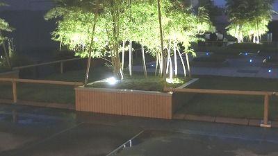f:id:kabutoyama-tigers:20200729121604j:plain