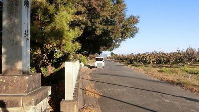 f:id:kabutoyama-tigers:20201118134623j:plain