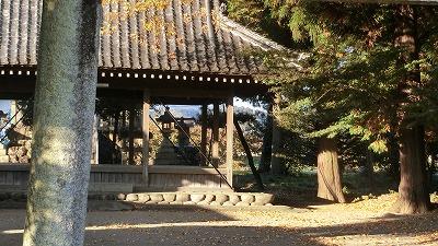 f:id:kabutoyama-tigers:20201118134743j:plain