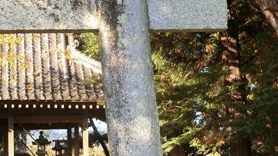f:id:kabutoyama-tigers:20201118141139j:plain