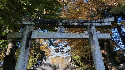 f:id:kabutoyama-tigers:20201118153706j:plain