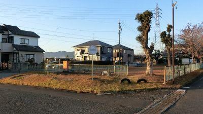 f:id:kabutoyama-tigers:20201118161848j:plain