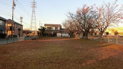 f:id:kabutoyama-tigers:20201118162809j:plain