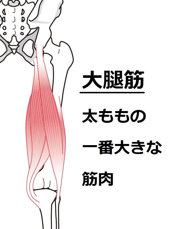 f:id:kachidokilife:20181209190407j:plain