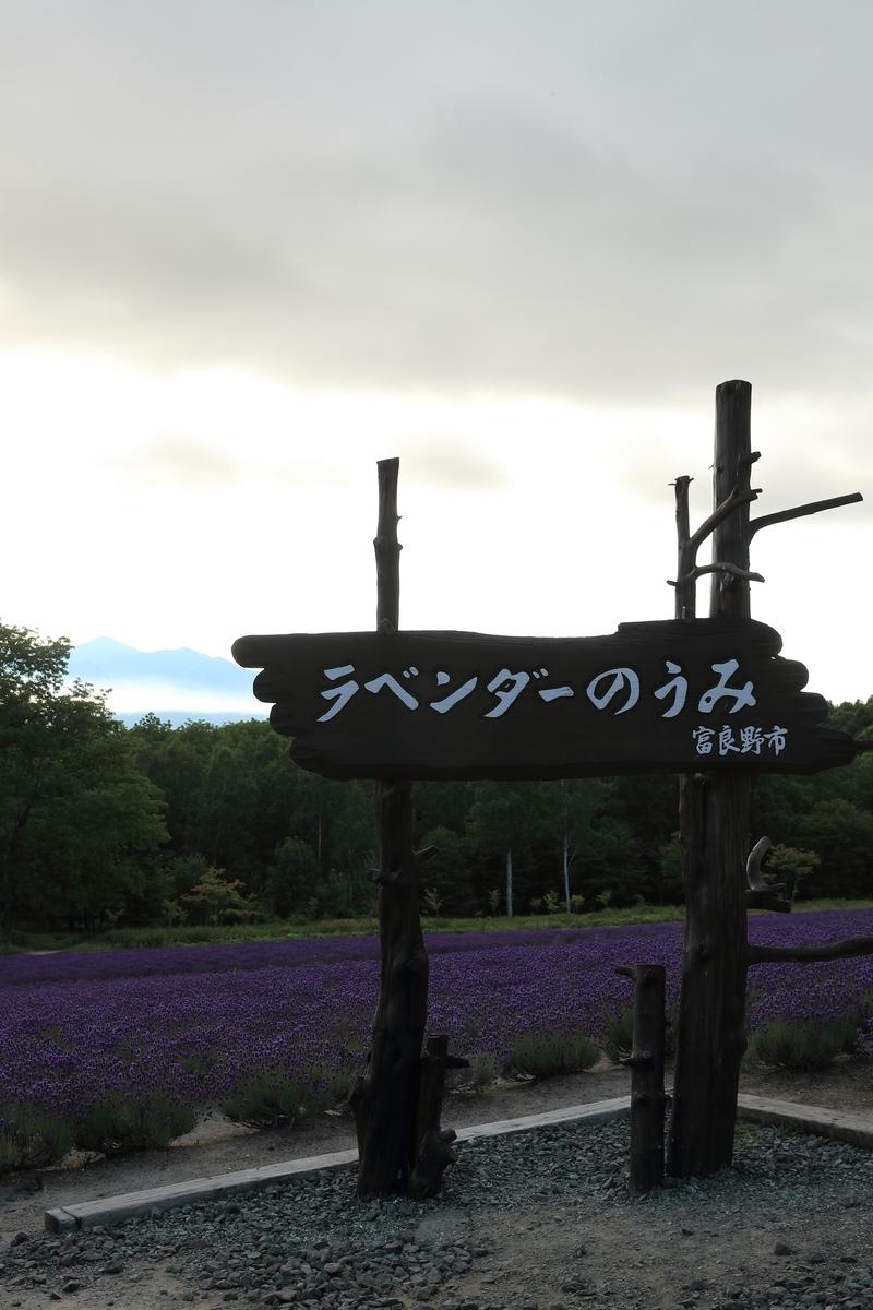 f:id:kachiko_h:20190724192634j:plain
